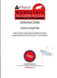 Warsztaty Killgerm Polska 2017